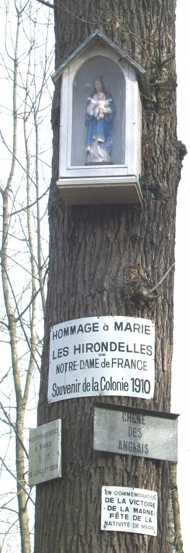 Chene des Anglais(1).jpg