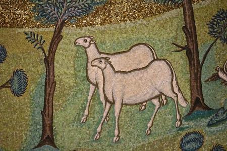 agneaux 7.jpg