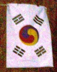 Samtaegeuki_Flag.JPG