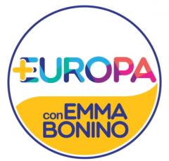 Screenshot-2018-2-22 +Europa — Più Europa, per un'Italia più libera e democratica.png