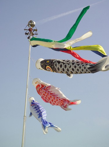 koinobori.jpg
