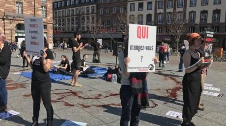 Screenshot_2019-03-30 A Strasbourg, une mise en scène choc de militants antispécistes contre la pêche et l'exploitation des[...].jpg