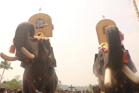 kappalottam-2017-moonnu-noimbu-kuravilangad-church-107.jpg