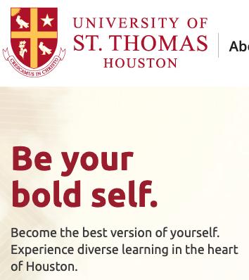 Screenshot_2019-06-07 University of St Thomas Catholic University Houston, Tx.png