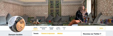 Screenshot_2019-04-13 Zamzam Ibrahim ( ZamzamMCR) Twitter.png